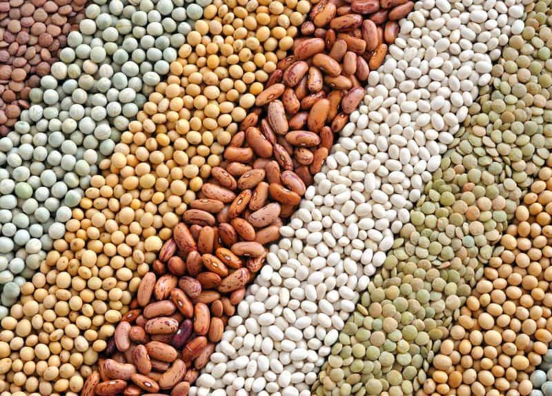 Best foods to buy in bulk